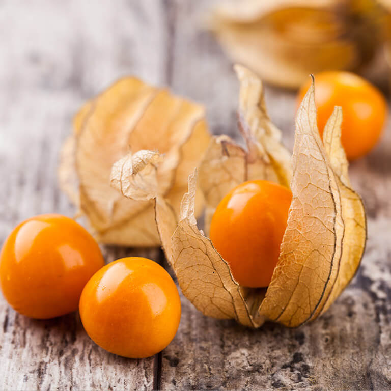 fruits kissao physalis
